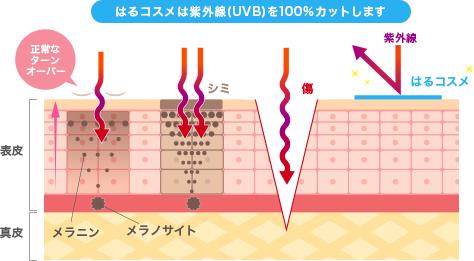 はるコスメは紫外線(UVB)を100%カットします