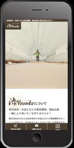 滋賀県東近江市 柿渋染め、糸加工などの素材開発、商品企画スマホイメージ